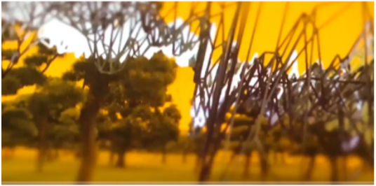 20mSv-per-year-ffloc-screen-grab-yellow